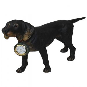 Dog with Watch