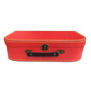 Orange Kids Storage Case