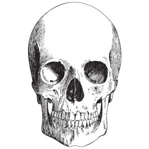Skull Placemat