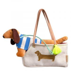 Hank the Dog in Carrier